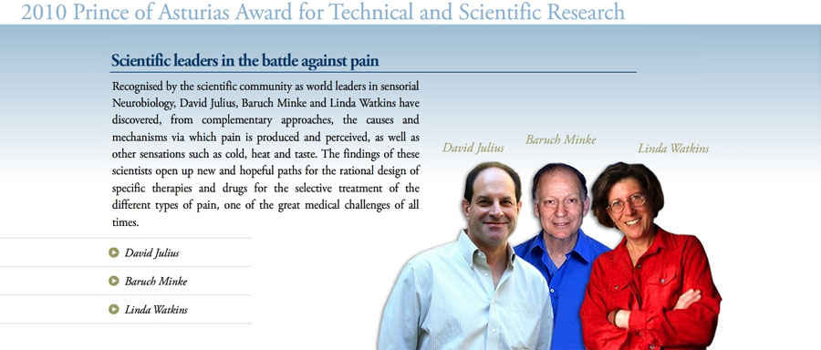 Scientific leaders in the battle against pain