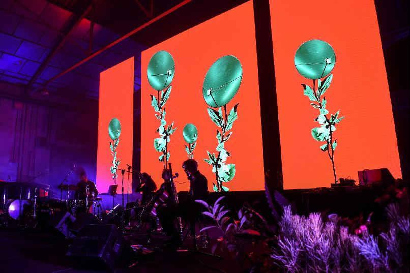 """Concierto """"Ruido Verde. Fusión musical entre plantas y humanos"""""""